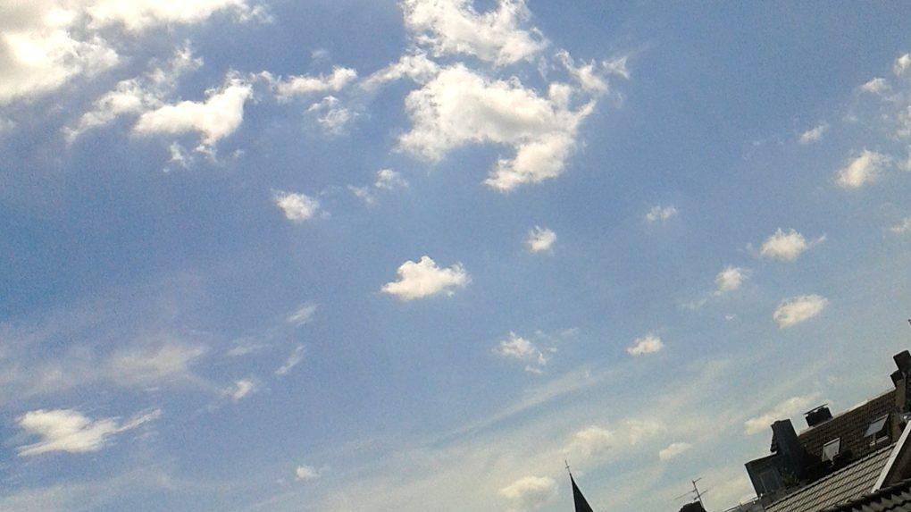 Picasso malt einen Mops an den Himmel