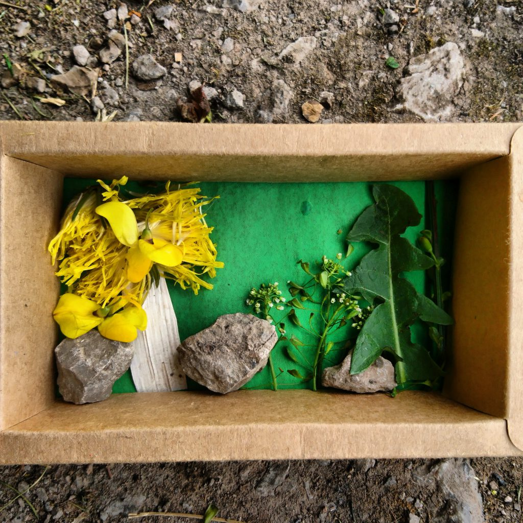 Landscape in a box